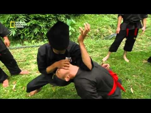 Fight Master Silat Official Trailer
