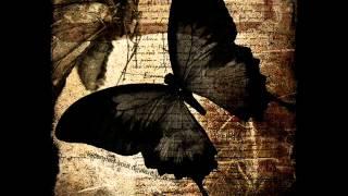 ERA-Reborn (lyrics)