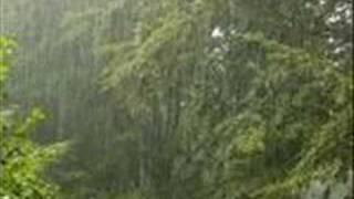 barsaat ke mausam main with lyrics
