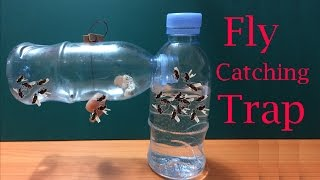 How to make Fly Trap at home easily to catch hundreds of fly in days   Creative Channel