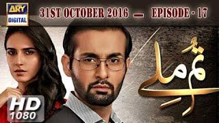 Tum Milay Ep 17 - 31st October 2016 - ARY Digital Drama