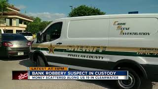 Florida man robs bank, throws stolen money out of window of getaway car as he leads police on chase