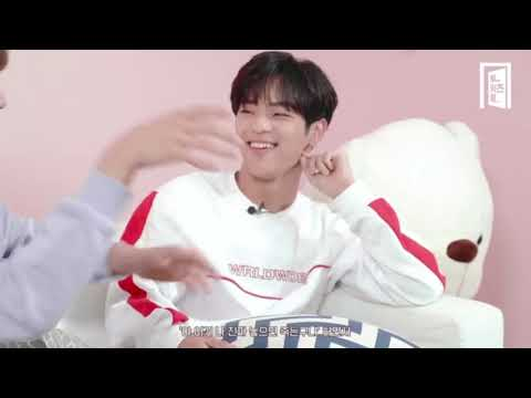 stray kids acting like their zodiac signs part 1