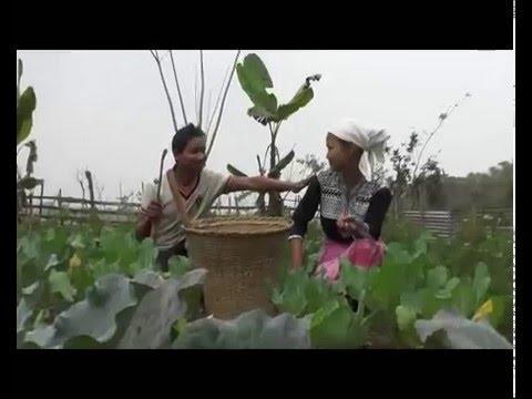 Xxx Mp4 A Garo Film Song Bida Dongjaoba From Darling Gitcham 3gp Sex