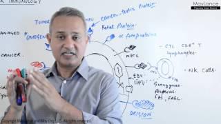 Immunology Lecture 18 Tumor Immunity
