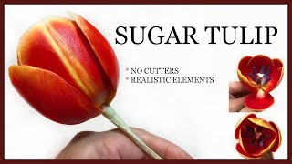 How to Make a SUGAR TULIP: NO CUTTERS, REALISTIC Elements Sugar Flower Tutorial