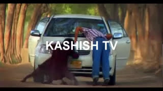 Hayaati (Kashish Tv)