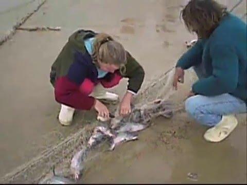 Pescaria de Bagre