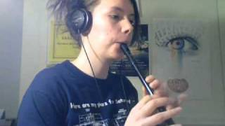 Traditional Irish Tin Whistle Songs