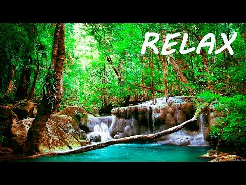 Relaxing Music and Soothing Water Sounds 2 🔴 Sleep 24 7 BGM Relaxation