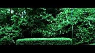 Contemplation Park - (Short Film)