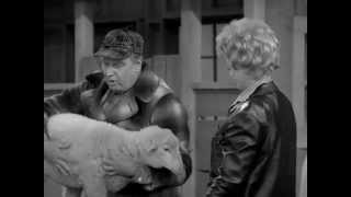 The Lucy Show.  Lucy Buys a Sheep.
