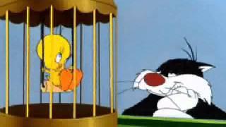 Tweety bird song