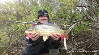 как поймать мелкую рыбу без удочки