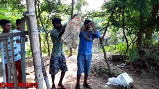 Amazing Indian Boy Catch Village Snake By Hand in Odisha