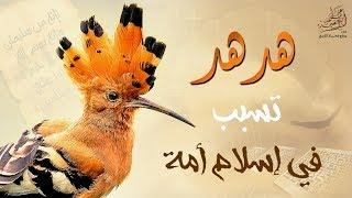 هُدهُد تسبب في إسلام أمة .. تلاوة يعجز اللسان عن وصفها للشيخ عبد الباسط عبد الصمد