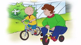 ■■ Caillou Full Episodes | Caillou learns to Cycle ☼☼ Hour Long Compilation | Brand New HD!
