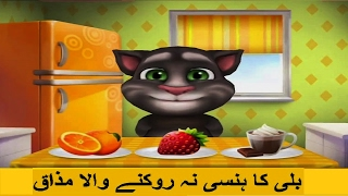 Talking Tom Funny Punjabi Videos | Best Of Punjabi Talking Tom | Funny Videos 2017