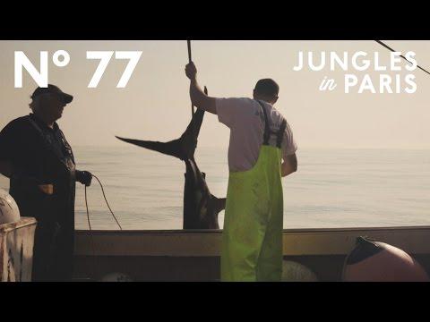 9 Days at Sea with Nova Scotian Harpoon Fishermen Atlantic Ocean near Georges Bank