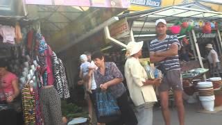 Piata centrala Otrava pentru soareci guzgani taracani