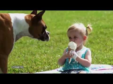 Dog eats little girls ice cream
