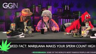 Snoop Dogg - GGN, Season 2, Ep. 1 - Android Miller brings you eight new facts about marijuana