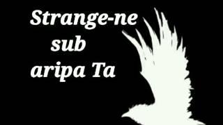 Isaura Gheorghiu -  Strânge-ne sub aripa Ta -  cu versuri