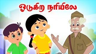 Odukira Nari   Vilayattu Paadalgal   Chellame Chellam   Kids Songs   Tamil Rhymes For Children   4k