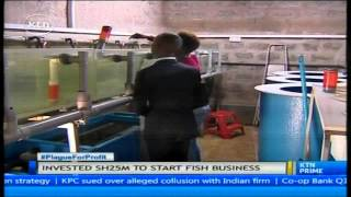 The adventurer: Jambo fish farm generating 15 million shillings in turnover annually