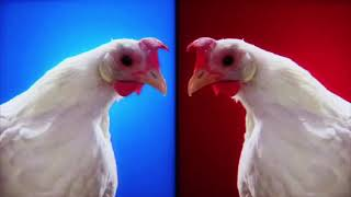 Techno Chicken Song - Geco Remix (1 Hour)