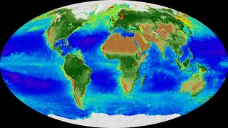 20 years of changing seasons on Earth (NASA video)