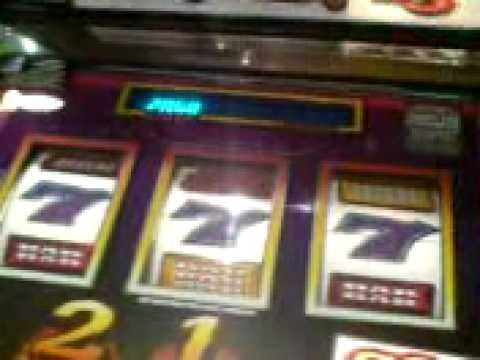 Xxx Mp4 Barcrest Red Hot Roll Blue Wild Jp 3x £5 3gp Sex