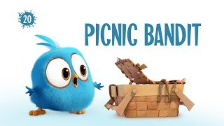 Angry Birds Blues | Picnic Bandit - S1 Ep20 #NEW