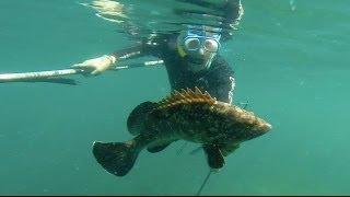 Pesca Submarina e mergulho na costa sul do Brasil