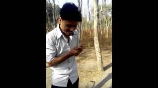 Alipur farm comedy
