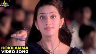 Andhrudu Songs   Kokilamma Video Song   Gopichand, Gowri Pandit   Sri Balaji Video