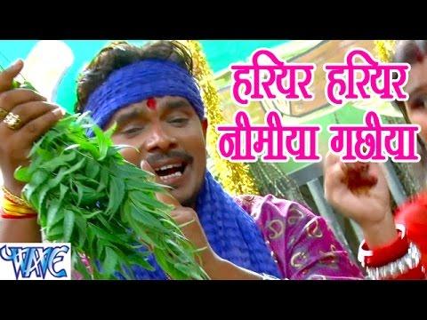 Xxx Mp4 हरियर हरियर निमिया गछिया Jay Jay Bol Mai Ke Parmod Premi Yadav Bhojpuri Devi Geet 2016 New 3gp Sex