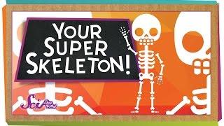 Your Super Skeleton!