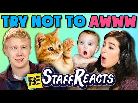 TRY NOT TO AWWW CHALLENGE ft. FBE Staff