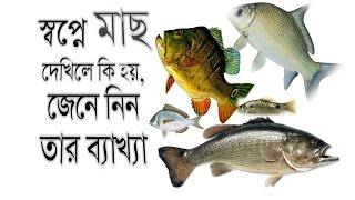 স্বপ্নে মাছ দেখিলে কি হয়, তার ব্যাখ্যা জেনে নিন | Shopner Tabir |  Shopner Bekkha