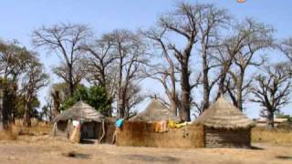 Pulaar Amadou Koli Sall.NdendoryTV Pulaar