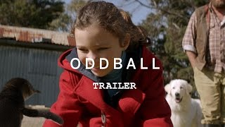 ODDBALL Trailer YouTube