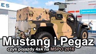Mustang i Pegaz czyli pojazdy 4x4 na MSPO 2016 (Komentarz) #gdziewojsko