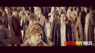 Newt & Tina || Fantastic Beasts and Where to Find Them || Perfect Stranger