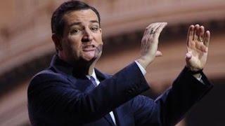 Ted Cruz Tried To Ban Dildos