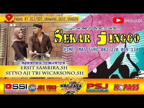 Xxx Mp4 🔴 LIVE CS NEW SEKAR JINGGO SRI JAYA SOUNDSYSTEM JMS VIDEO HD 3gp Sex