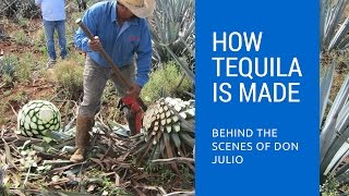 How Tequila Is Made: Behind The Scenes of Don Julio Tequila