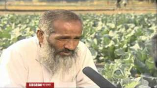 e-Krishok: Advancing towards eAgriculture in Bangladesh