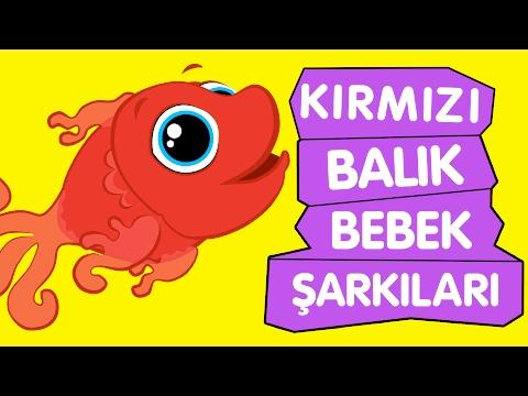 Xxx Mp4 Kırmızı Balık Bebek Şarkıları Sevimli Dostlar Çizgi Film Çocuk Şarkıları 2016 Adisebaba TV 3gp Sex
