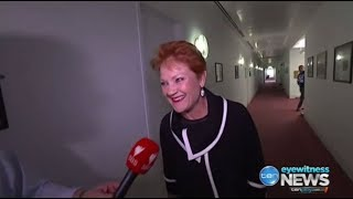 Pauline Hanson laughs at burqa stunt